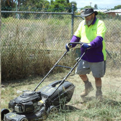 social enterprise canefields clubhouse mental health employment lawn mower man